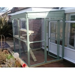 Cat Run attached to conservatory in Leicestershire