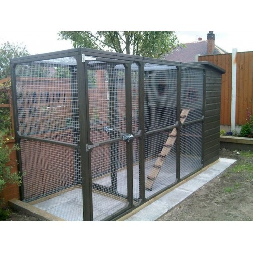 Outdoor Cat Run With Cat House Walk In Cat Run Suitable