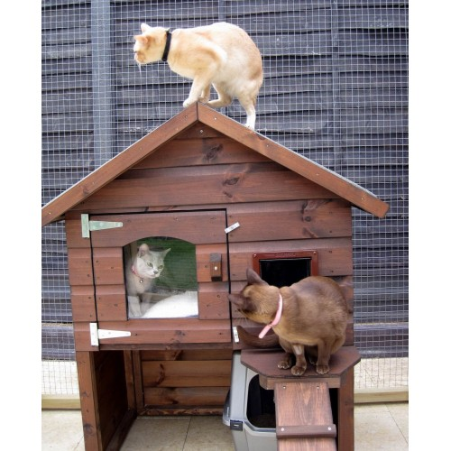 outdoor cat box