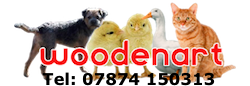 chicken coops outdoor cat runs cat enclosures and hen houses
